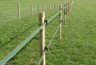 Auchmore Electric fencing 4